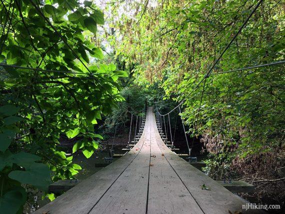 Swinging Bridge Institute Woods