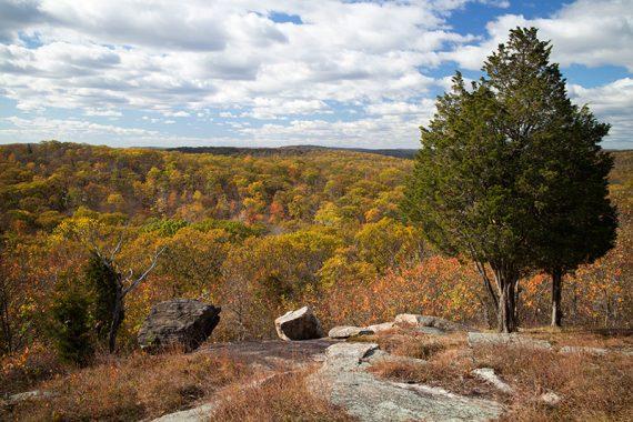 Lots of views along Hewitt Butler trail