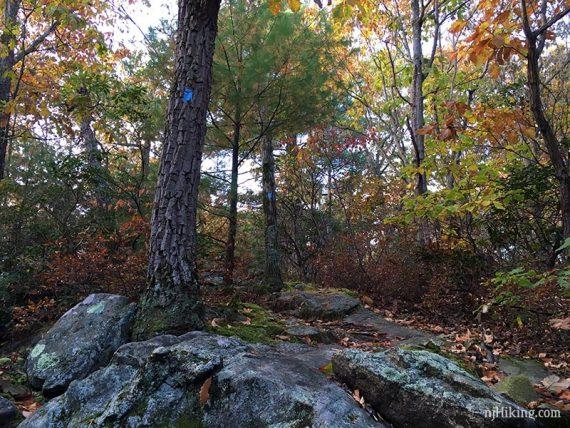 Hewitt Butler Trail