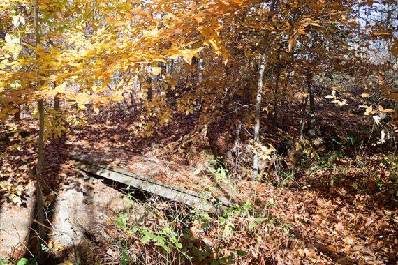 Bridge on Reservoir Loop trail
