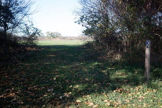 Trail marker along Marlu