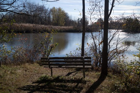 Bench off of Reservoir trail