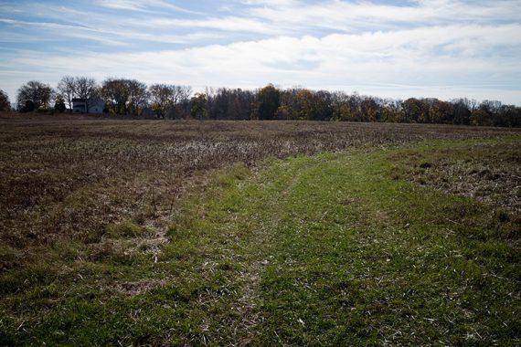 Cross this field on mowed paths
