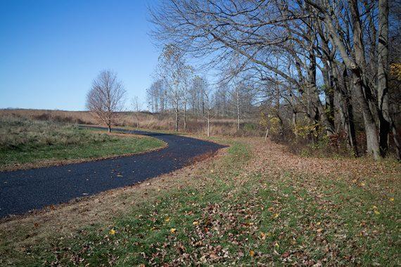 Back along the field trail