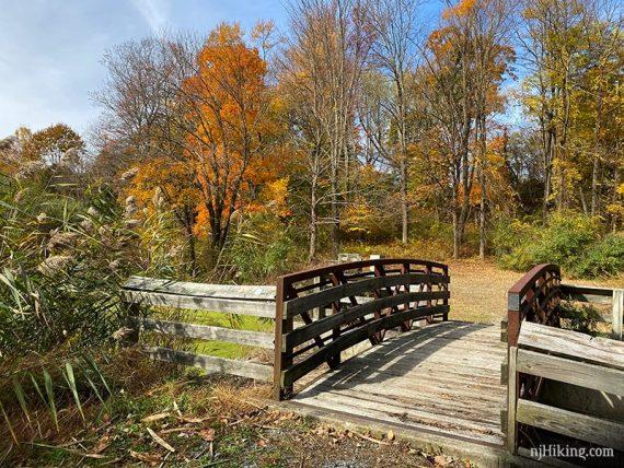 Wooden bridge with autumn trees around it