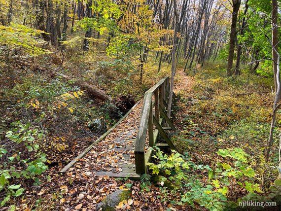 Bridge on Allamuchy Pond