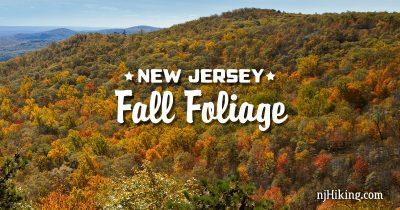 New Jersey Fall Foliage
