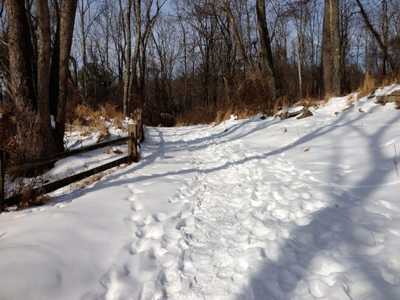 Trail with trampled snow