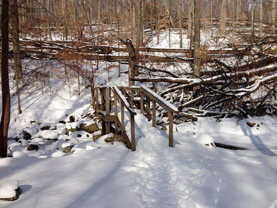 Snow on a wooden footbridge