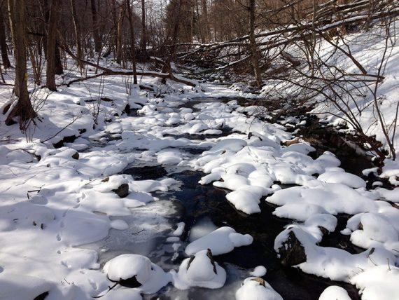 Frozen Merrill Creek