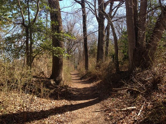 Continental Lane Trail