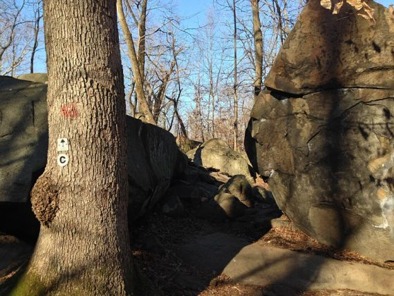 Devil's Half Acre Boulders