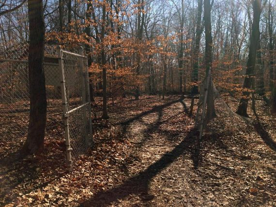 The fence right before Marker 8