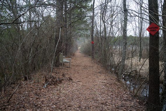 "Start of ""Nature Trail"""