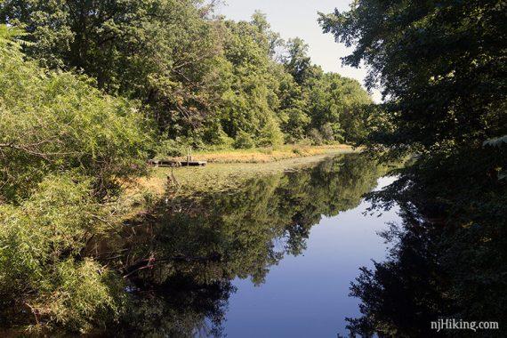 View of Farrington Lake