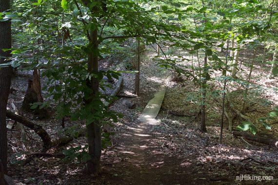 Footbridge on the white trail