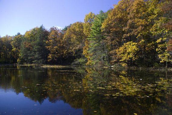 Lake Lenape