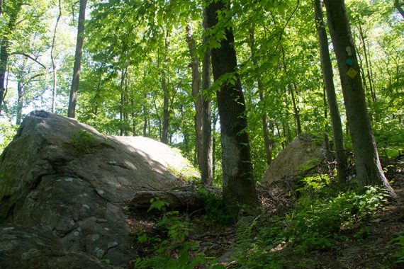 Ridge/Highlands trail