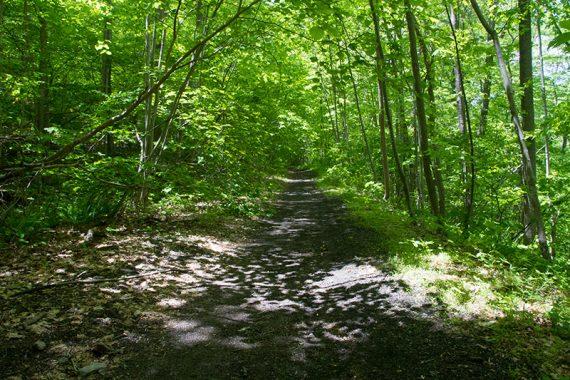 Easy abandoned rail line trail