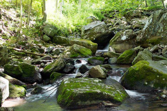 Cascades along the ORANGE trail