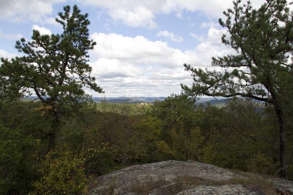 View from Carris Hill