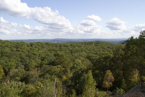 View from Buck Mountain