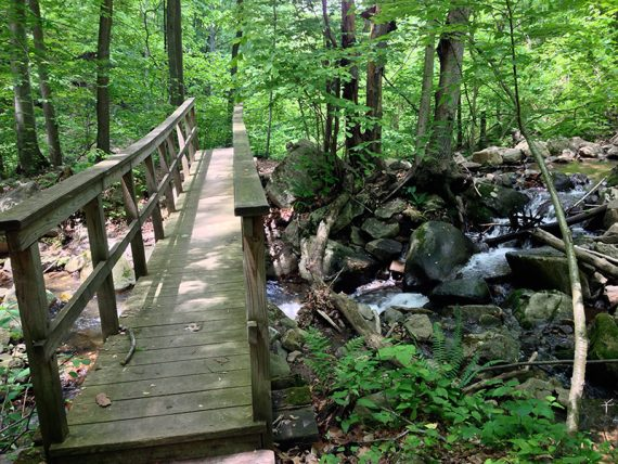 Bridge along the ORANGE trail