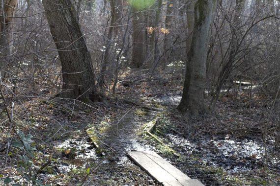 Break Back Run trail