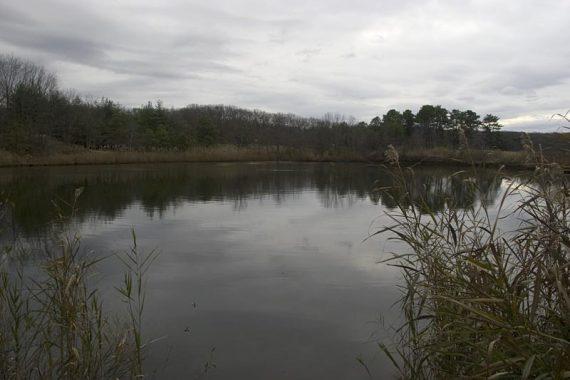 Perrine Pond