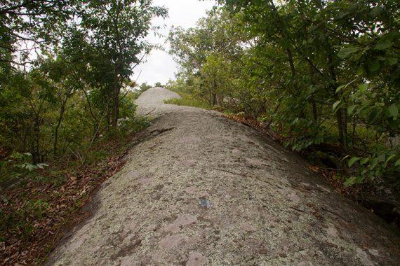 Rocky Hewitt Butler trail