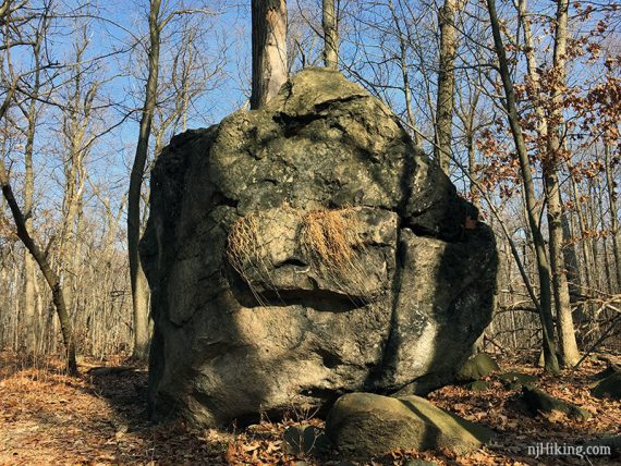 Haring Rock - glacial erratic on ORANGE