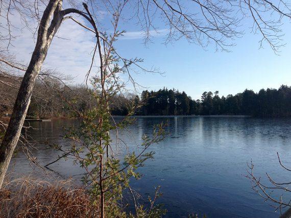 Wells Mills Lake