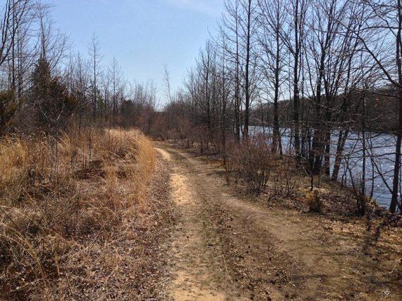 Maggie's Trail