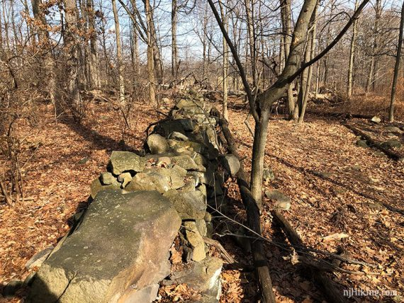 Old stone fence on Bischoff