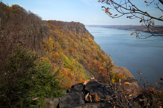 Fall foliage in the Palisades
