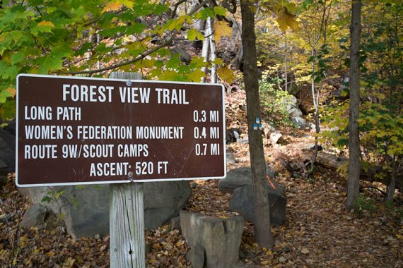 Forest View trail sign