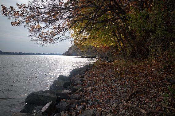The Shore trail