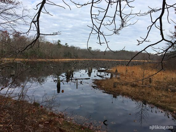Long Swamp Pond