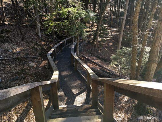 Trail is a boardwalk in many areas