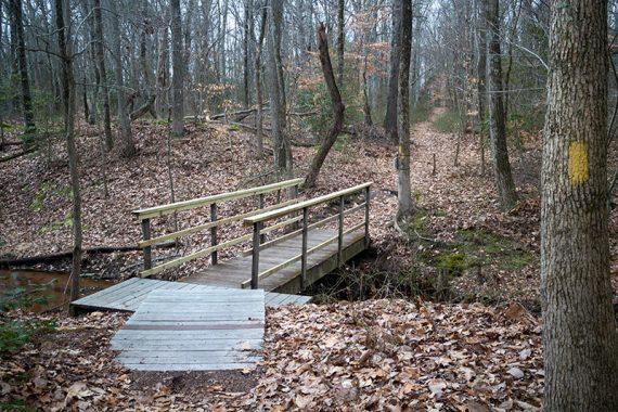 This bridge connect the Nature Center trails to Rancocas State Park