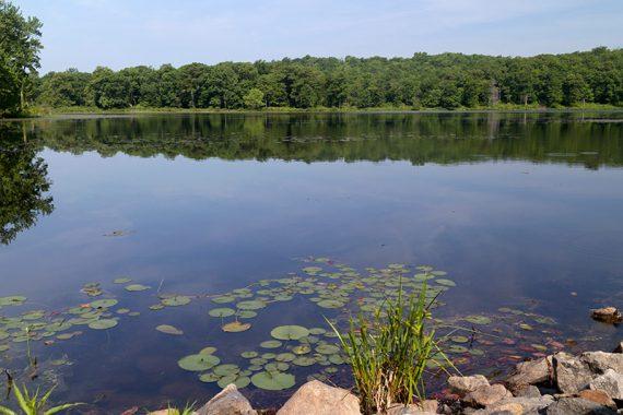 Deer Park Pond
