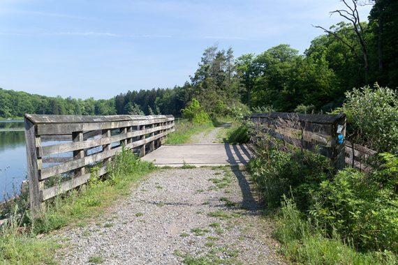 Bridge at Deer Park Pond