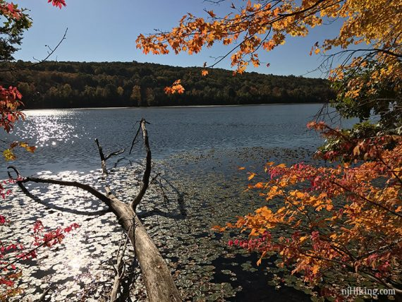 Lake Aeroflex from WHITE trail.