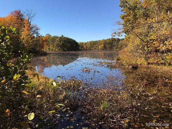 Whites Pond