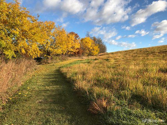 Hike along meadows