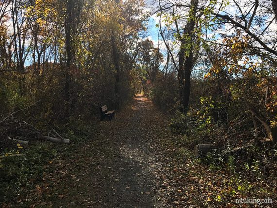 The trail is straight as it follows an old railroad bed.