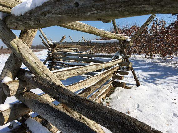 Fence on Hedgerow & Parsonage