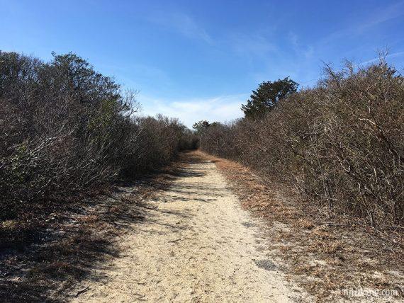 Spizzle Creek trail
