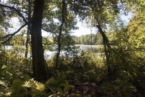 Kasmar Pond on the AT