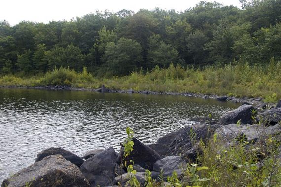 Hanks Pond from a spur trail